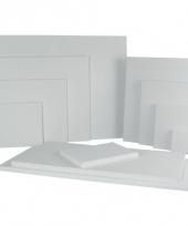Canvas schildersdoek 20 x 20 cm trend