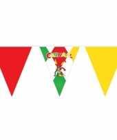 Carnaval vlaggetjes vlaggenlijn 10 meter trend