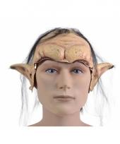 Carnavals masker van een elf trend