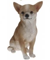 Chihuahua beeldje beige 22 cm trend