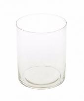 Cilinder vaas helder glas 30 cm trend
