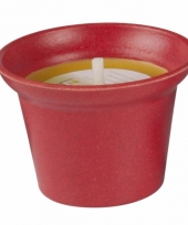 Citronella kaars 10 cm rood trend