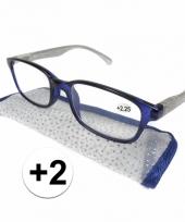 Dames leesbril 2 blauw met zilver trend