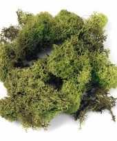 Deco mos lichtgroen 200 gram trend