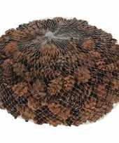 Decoratie dennenappels bruin 3 cm trend