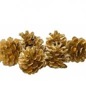 Decoratie dennenappels goud 20 stuks trend