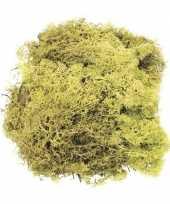 Decoratie mos lichtgroen 50 gram trend