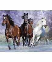 Decoratie poster van paarden trend
