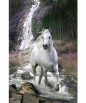 Decoratie poster waterval met paard trend