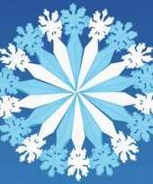 Decoratie sneeuwvlok trend