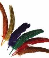 Decoratieve veren met stippen trend
