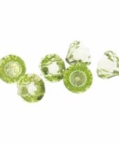 Diamant magneten groen 6 stuks trend