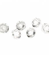 Diamant magneten transparant 6 stuks trend
