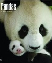 Dieren kalender 2018 panda trend