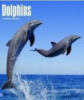 Dieren kalender dolfijnen 2018 trend