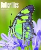 Dieren kalender vlinders 2018 trend