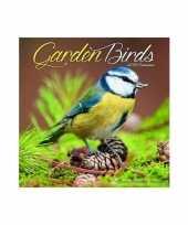 Dieren kalender vogels 2019 trend