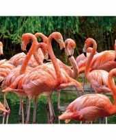 Dieren magneet 3d flamingo trend