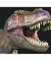 Dieren magneet 3d t rex trend