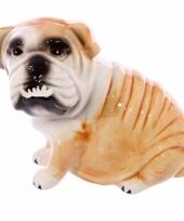 Dieren spaarpot bulldog trend