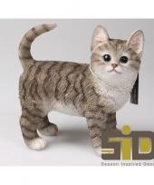 Dierenbeeld kat poes tabby grijs staand 20 cm trend