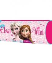 Disney etuis frozen roze 20 cm trend