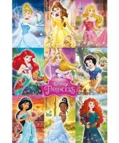 Disney princess poster 61 x 91 5 cm trend