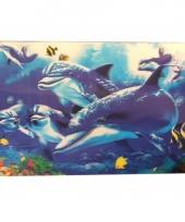 Dolfijn onderleggers trend