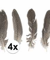 Fazantenveren 4 stuks trend