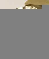 Feestartikelen diepe borden goud 21 cm trend