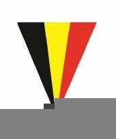 Feestdecoratie belgie vlaggenlijn 5 meter trend