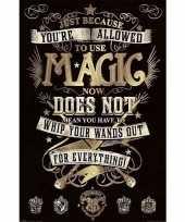 Filmposter harry potter magie 61 x 91 cm trend