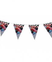 Formule 1 vlaggenlijn 3 meter trend