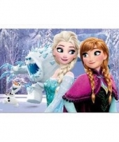 Frozen 3d placemat type 2 trend