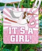 Geboorte decoratie tuinbord meisje trend