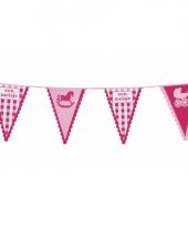 Geboorte vlaggenlijnen meisjes trend