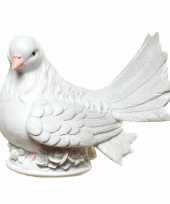 Geld spaarpot witte duif trend