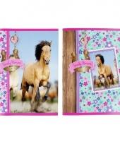 Gelijnde schoolschriften met paarden trend