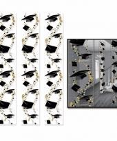 Geslaagden ophangdecoratie 183 x 30 cm 3 stuks trend
