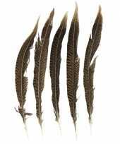 Goudfazant veren 28 cm 5 stuks trend
