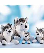 Grijs met witte husky knuffel 43 cm trend