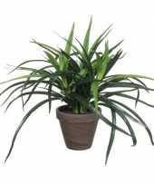 Groene dracaena kunstplant in bruine pot 34 cm trend