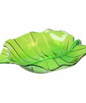 Groene fruit schaal 32 cm trend