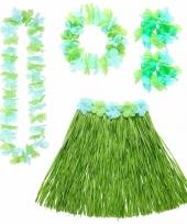 Groene hawaii verkleedset voor dames trend