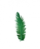 Groene veren 35 cm trend