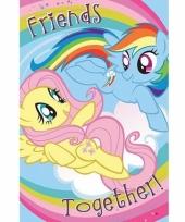 Grote deurposter van my little pony trend