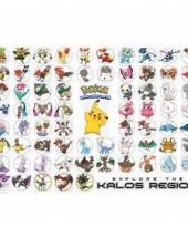Grote deurposter van pokemon soorten trend