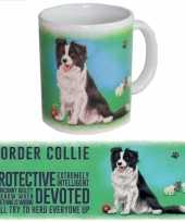 Grote theemok border collie trend