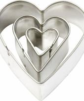 Grote uitstekers hart vorm 3 stuks trend