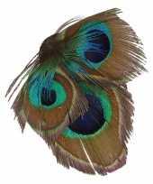 Haarbloem pauwveertjes groen blauw trend